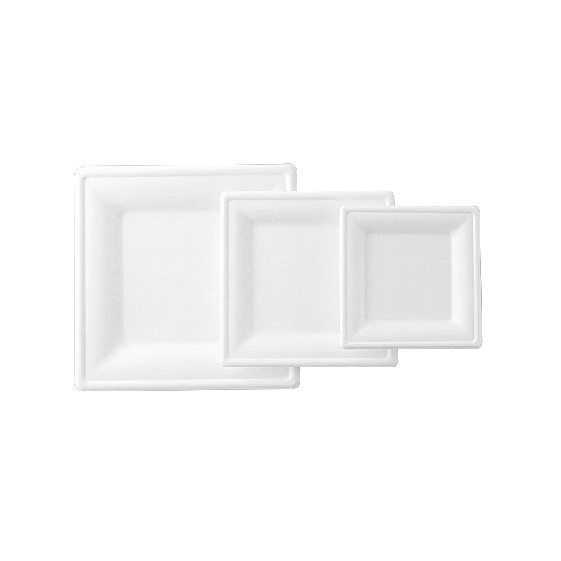 8 Inch Eco Friendly Bagasse Square Plate